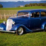 Drrod Blue Tudor 19