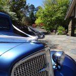 Drrod Blue Tudor 26